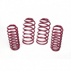 Seat Leon, Typ 1M, 1.8, 1.8 T, 1.9 SDI, 1.9 TDI 99>06 -50/30mm